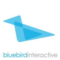 Bluebird Interactive