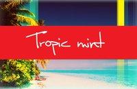 TropicMint