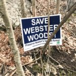 Boston College Files Lawsuit Against Newton to Challenge Compensation Received For Webster Woods