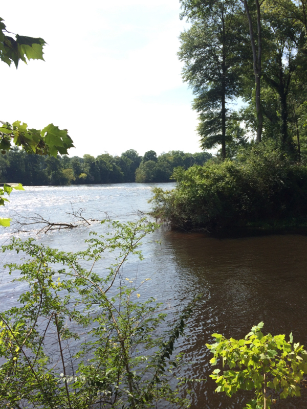 Wateree river sc fishing reports map hot spots for Lake marion fishing report