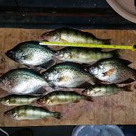 A photo of Austin Schmidt's catch