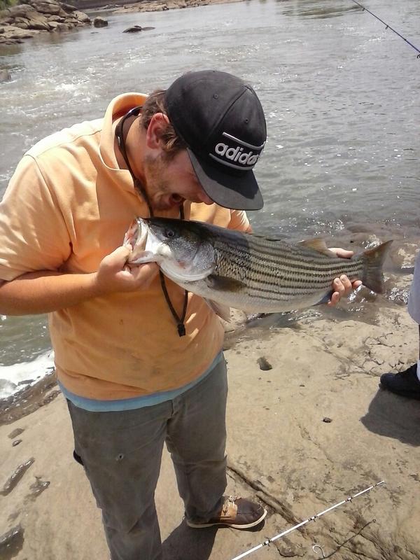 A photo of Tommy  Gresham 's catch