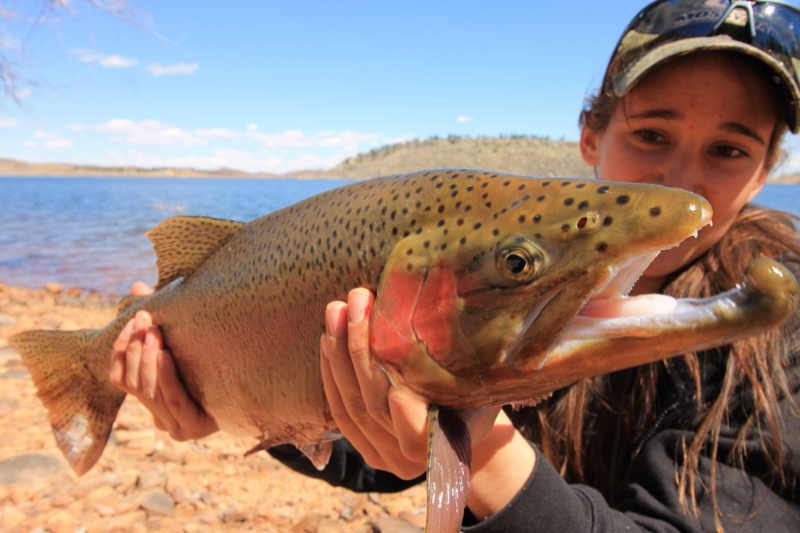 Carter Lake Co Fishing Reports Map Hot Spots
