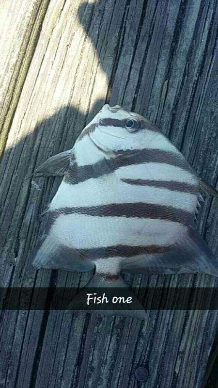 A photo of Logan  Stoner's catch
