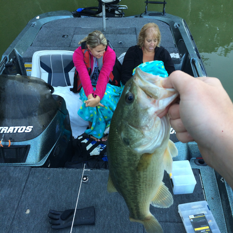 Caught a largemouth bass on taylorsville lake using a ned rig for Taylorsville lake fishing report
