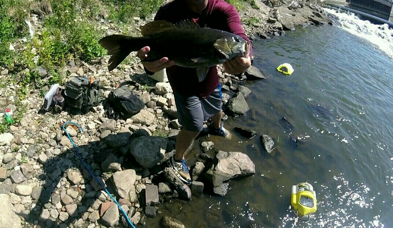 A photo of Ben Lea's catch