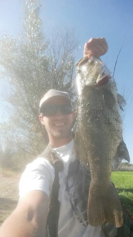 A photo of Dan Woodcock's catch