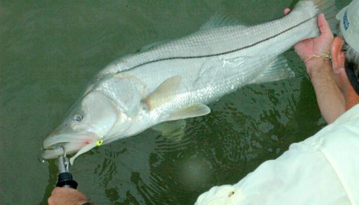 Clear Creek TX Fishing Reports, Map & Hot Spots