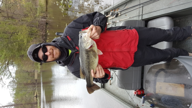 Reelfoot Lake TN Fishing Reports, Map & Hot Spots