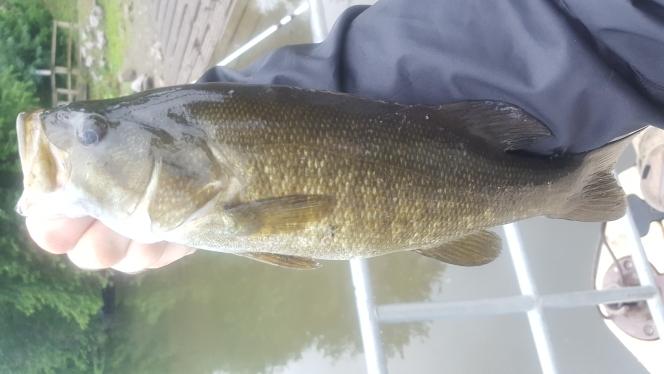 A photo of Sylvia Pawlinski's catch