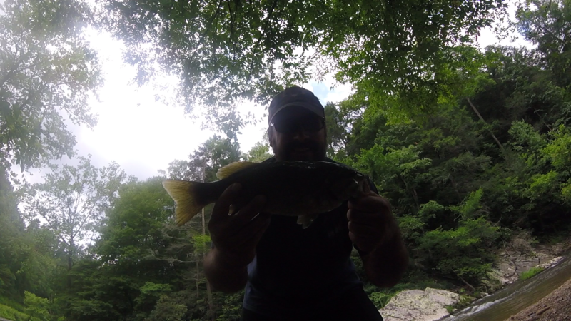 French Broad River (Stackhouse) NC Fishing Reports, Map & Hot Spots