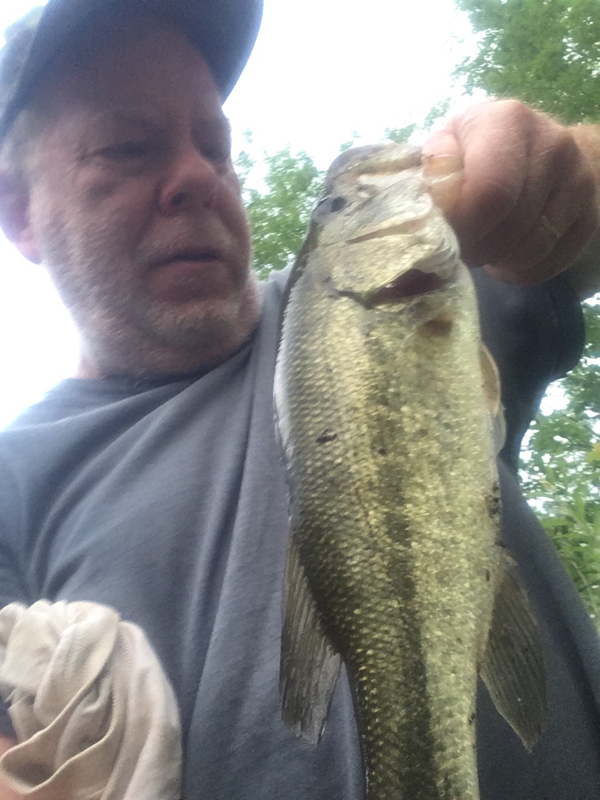 A photo of Tony Steelman's catch