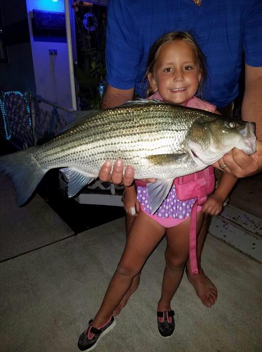 A photo of Jason Meadors's catch