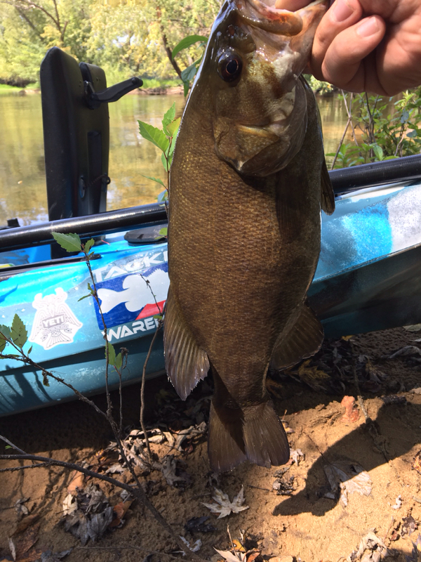 A photo of Kyle  Brinkman 's catch