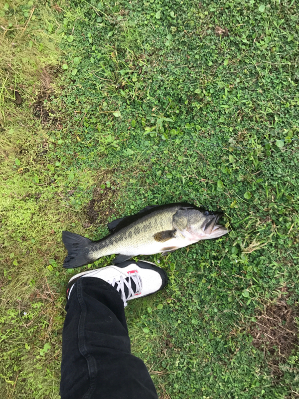 A photo of Sean Countryman's catch