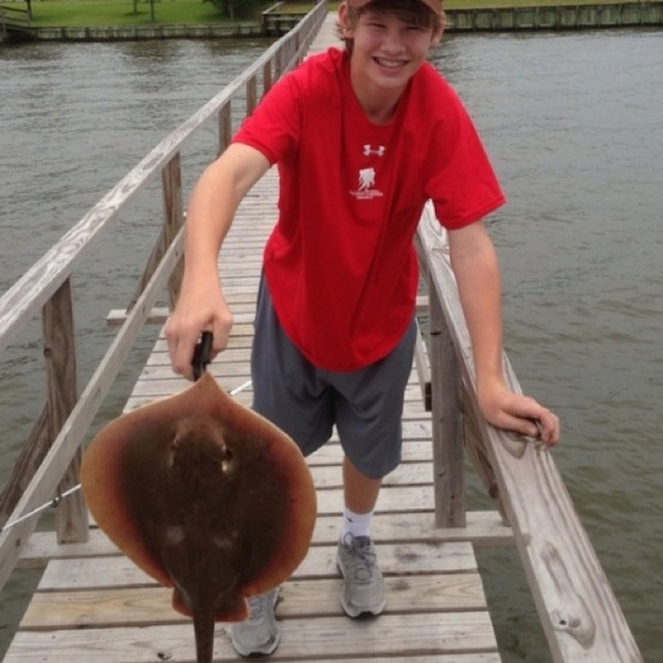 A photo of jackfain7's catch