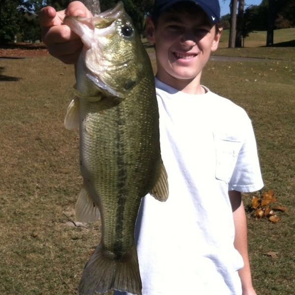 A photo of hillcater15's catch