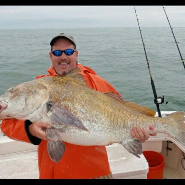 A photo of bestintheworld44's catch