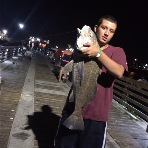 A photo of AlexM1's catch