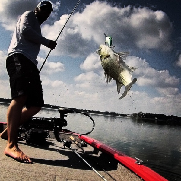 A photo of Tannerson's catch