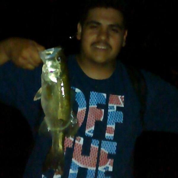 A photo of meno_61095's catch