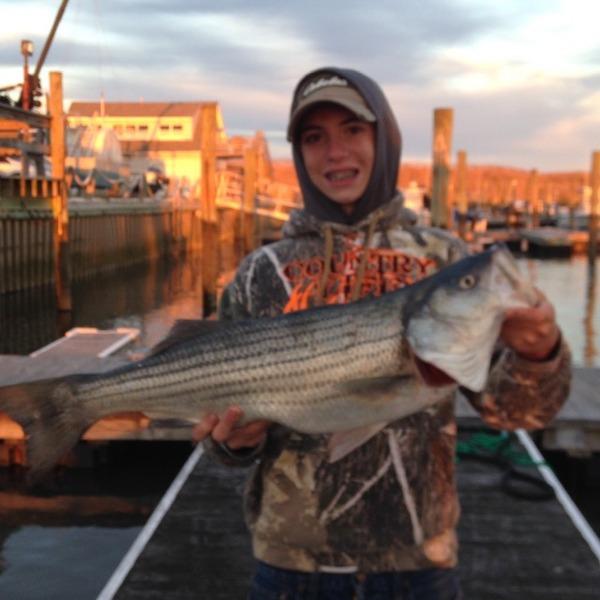 A photo of basslipper's catch