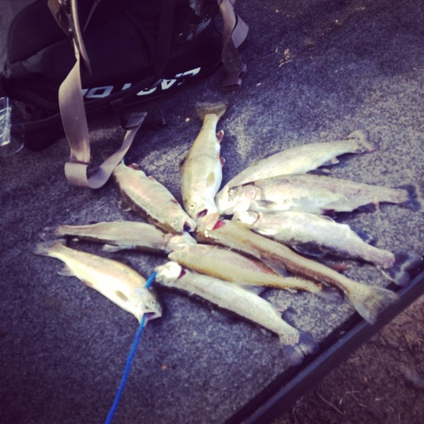 A photo of Blake  Bennett's catch