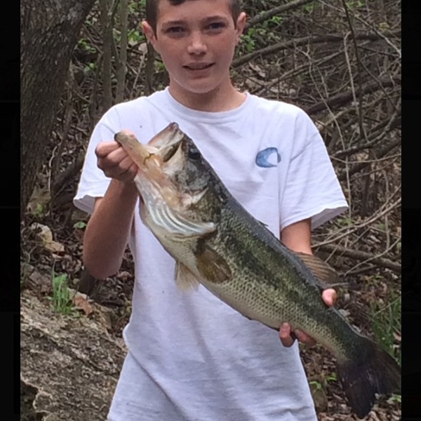 A photo of saylor_cline's catch