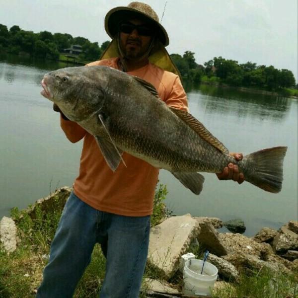 A photo of fishingaddict's catch
