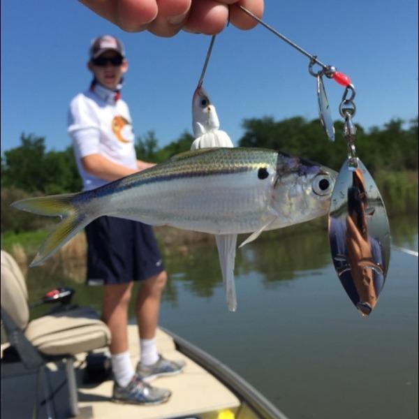A photo of cooper marchetto's catch