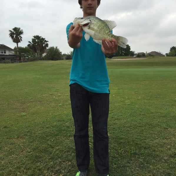 A photo of __shan___'s catch
