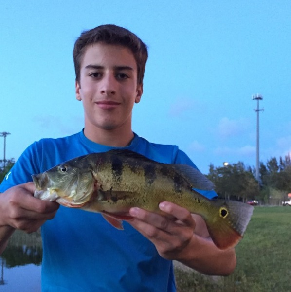 A photo of Angler09's catch