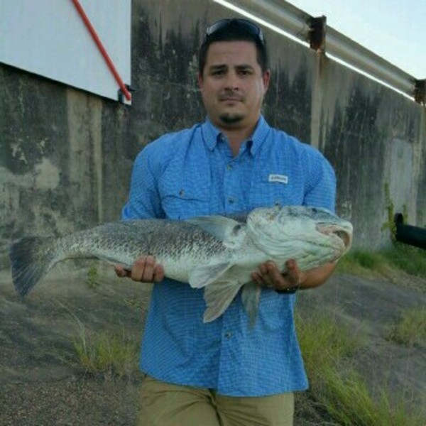 A photo of meandean713's catch