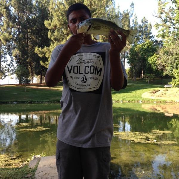 A photo of BassSlayer27's catch