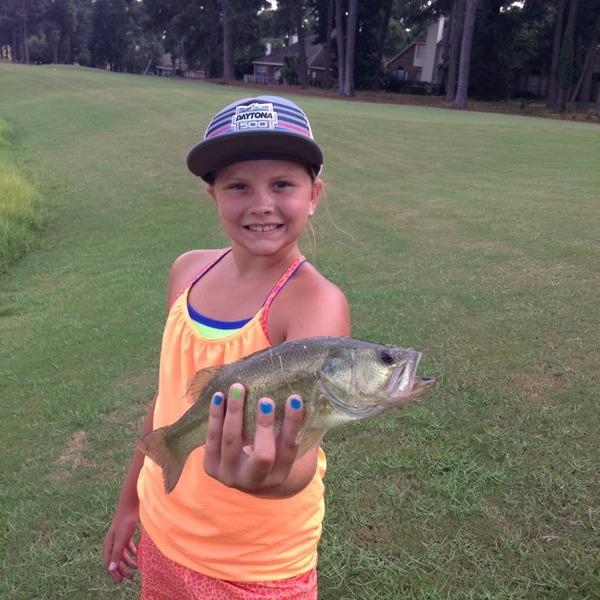 A photo of BuckHunter40's catch