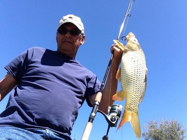 A photo of Ed_Arredondo2's catch