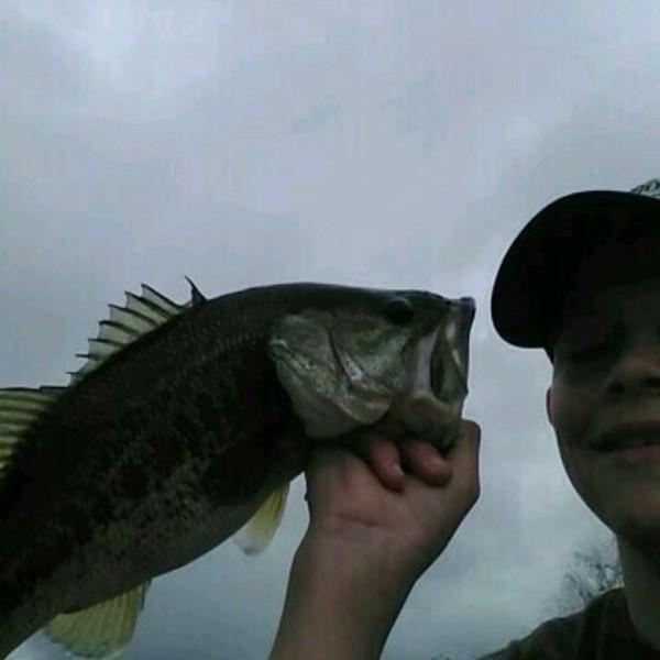 A photo of beachfisher's catch