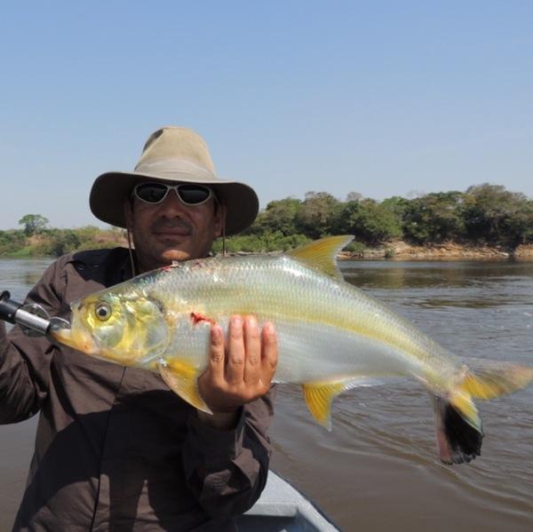 A photo of aquevedo's catch