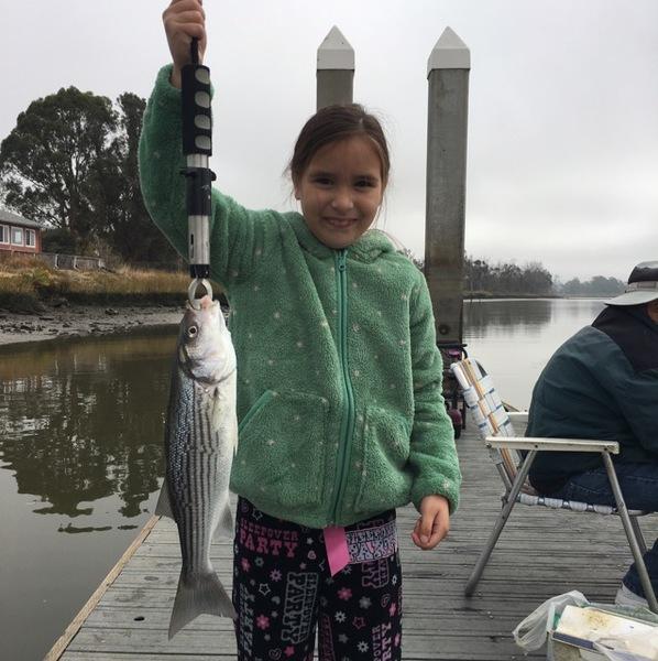 A photo of vfishy's catch