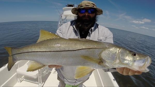 A photo of Swamp Mafia's catch