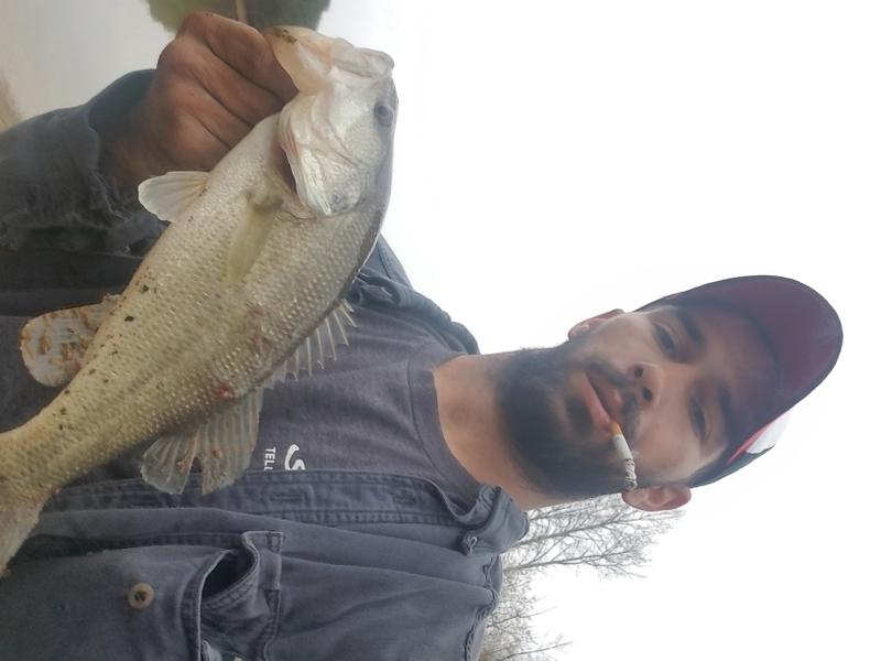 A photo of Dustin  Harris 's catch