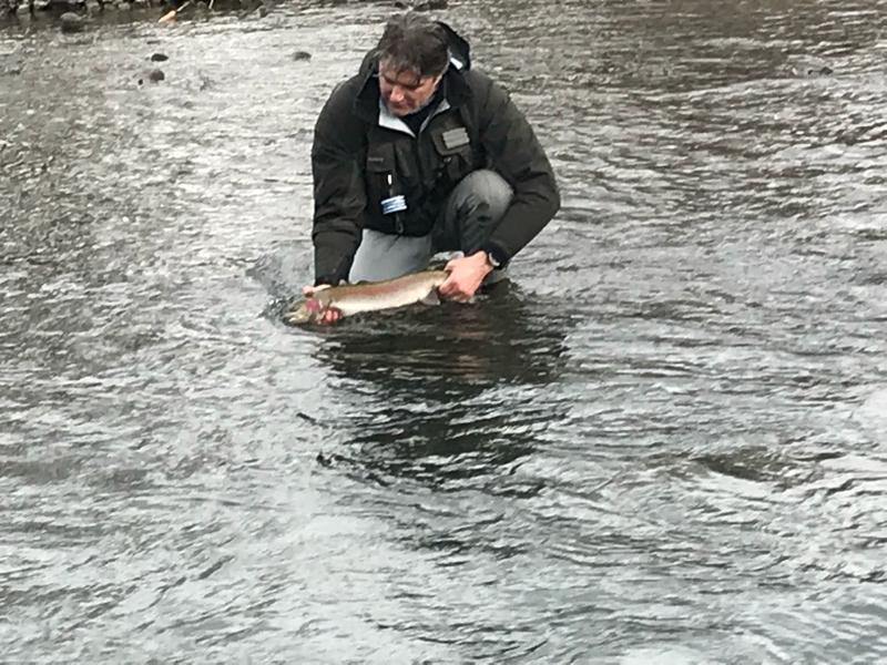 A photo of Eric Davis's catch