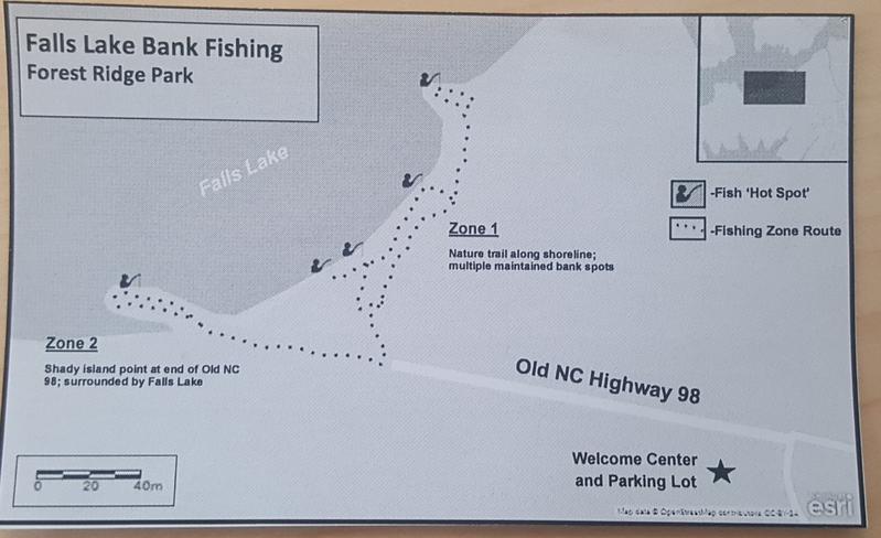 Falls lake nc fishing reports map hot spots for Kerr lake fishing hot spots