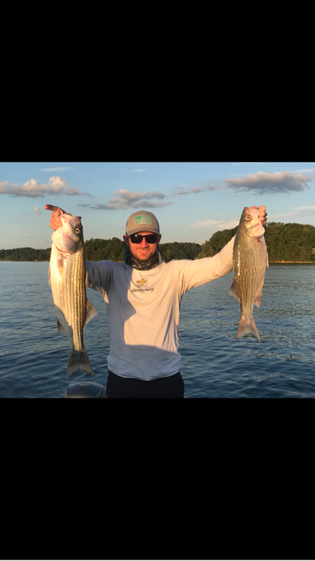 cherokee lake fishing report