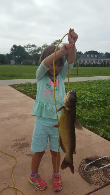 A photo of Terry Nussbaumer 's catch