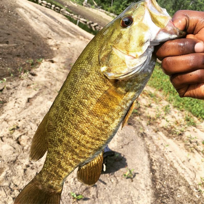 A photo of Eli Mcfly's catch