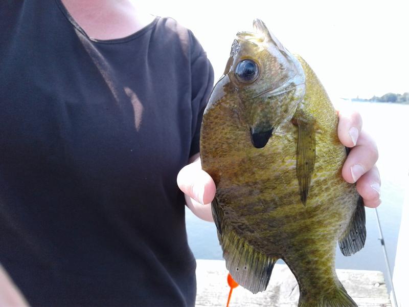 A photo of Brenda Marie's catch