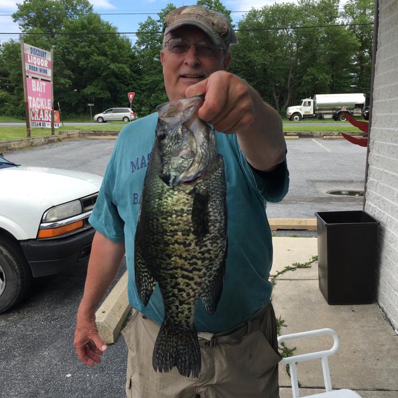 A photo of Edward Fleck's catch