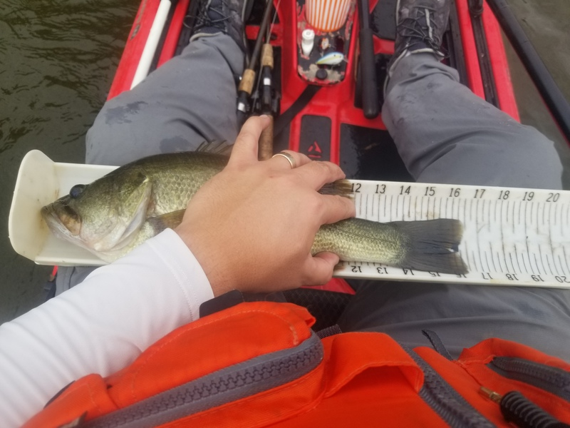 A photo of Brandon Villanueva's catch
