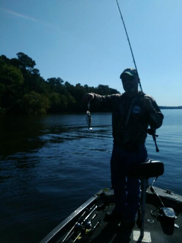 Lake Tyler (Lake Tyler West) TX Fishing Reports, Map & Hot Spots